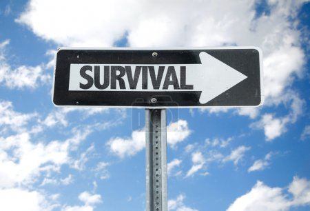 Survival direction sign