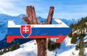 Slovakia Flag wooden sign