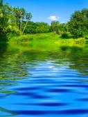 Felszíni Rippled, a víz és a természet háttér