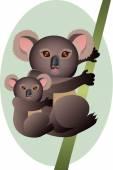 Matka a dítě koala