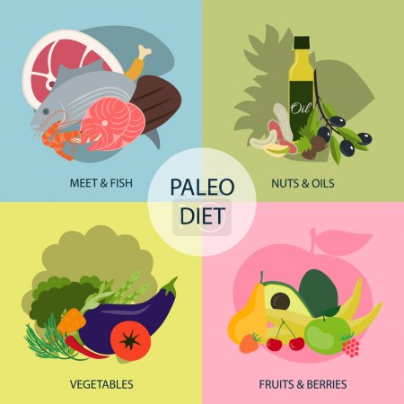 Paleo diet. Four groups of products
