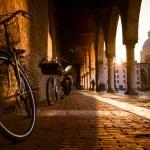 View of italian Mantua city...