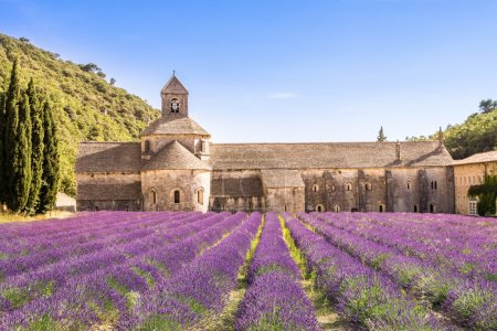 Senanque Abbey in Provence, France