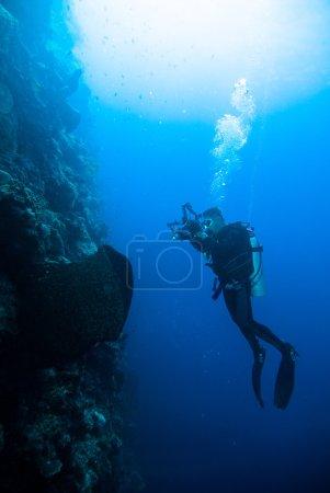 Underwater photography photographer diver scuba diving bunaken indonesia reef ocean