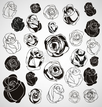 Illustration for Vector illustration of silhouette rose set - Royalty Free Image
