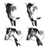 Vector illustration of  horses head silhouettes