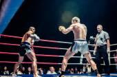 Boj o šampionát pás Evropy kick box