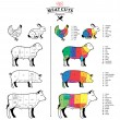 Постер, плакат: American US Meat Cuts Diagrams