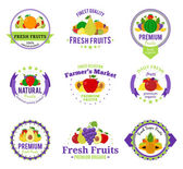 Fruits Logos Labels and Design Elements