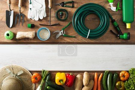 Photo pour Outils de jardinage et d'agriculture sur une table en bois et légumes fraîchement récoltés, espace de copie vierge, vue de dessus - image libre de droit