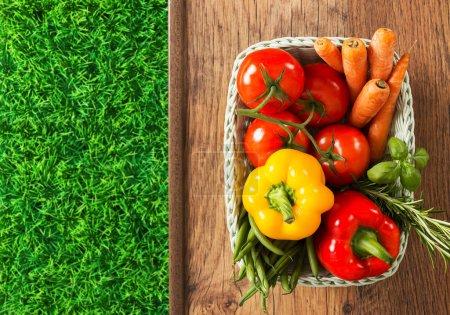 Photo pour Légumes et herbes fraîchement récoltés dans un panier blanc et herbe verte sur une table en bois - image libre de droit