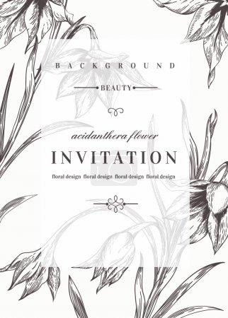 Illustration pour Modèle d'invitation de mariage avec des fleurs. Noir et blanc. Fleurs d'acidanthère. Illustration vectorielle . - image libre de droit
