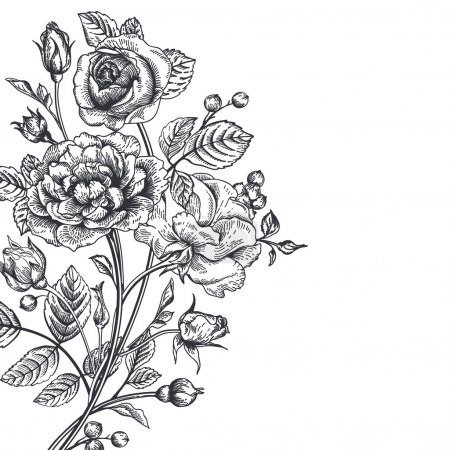 Illustration for Vintage vector background with a bouquet of roses. - Royalty Free Image