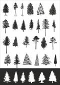 Pine trees vector collection