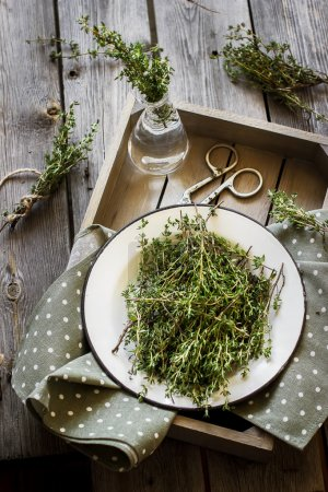 Thyme in vintage plate,napkin and scissors in wooden box.