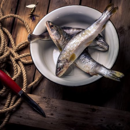 Raw river fish,knife and stripped vest on old wooden table.