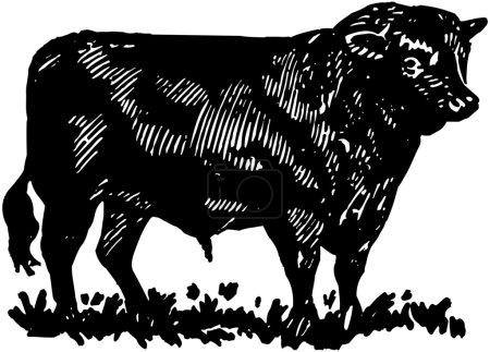 Retro Bull