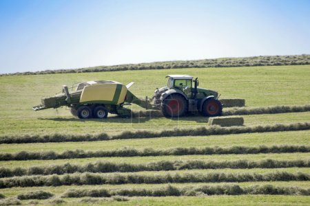 Heuernte-Traktoren auf dem Feld machen Heuhaufen