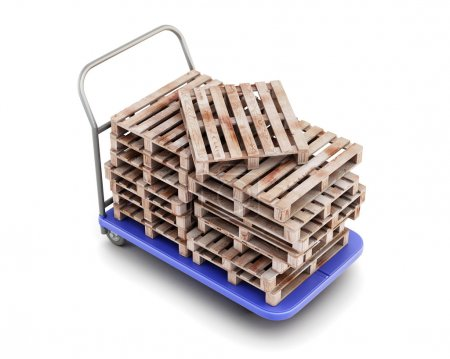 Transport trolley with pallets