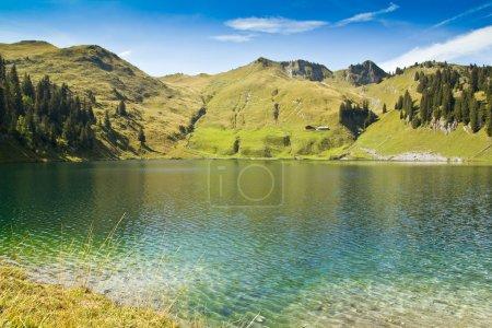 Clean alpine lake in summer