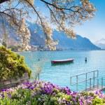Montreux Riviera of Lake Geneva in Canton Vaud, Sw...
