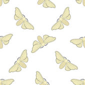 Seamless pattern with butterfly Bombyx mori    hand-drawn butterfly Bombyx mori  Vector illustration