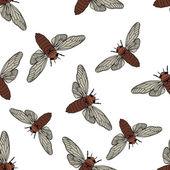 Seamless pattern with cicada  Cicadidae Chremistica umbrosa     hand-drawn cicada  Vector illustration