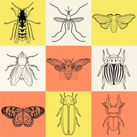 insect icons set Cicada and