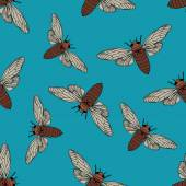 Seamless pattern with cicada  Cicadidae Chremistica umbrosa     hand-drawn cicada  Vector