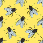 Seamless pattern with fly Musca domestica  hand-drawn  fly Vector illustration