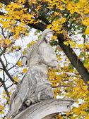 Old statue  in Lviv, Ukraine