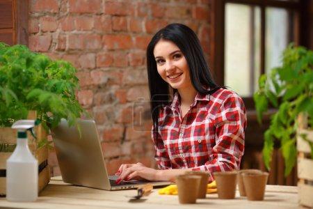 Photo pour Je cherche les meilleurs conseils. Magnifique jardinière brune souriante surfant sur Internet sur son ordinateur portable assis près de ses semis de tomate à l'intérieur - image libre de droit