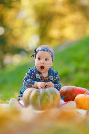Photo for Little girl in jeans sundress sitting near the pumpkin on a background autumn forest. Cheerful child playing outdoors, lying near the pumpkin - Royalty Free Image