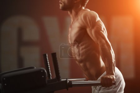 Photo for Strong muscular bodybuilder doing exercise on bars in the gym - Royalty Free Image