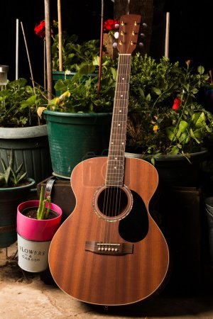 Acoustic woody guitar