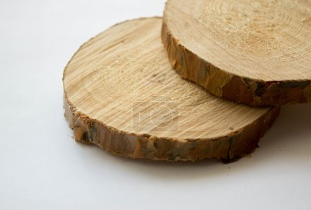 Cut of logs on a white background. Pine. Selective focus.
