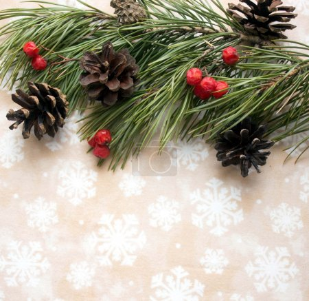 Christmas background with tree branch, rowan berry, cones.