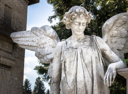 Statue of an weeping angel
