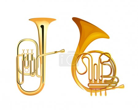 Illustration for French Horn and Tuba - Brass Musical Instruments, Vector Illustrations isolated on white - Royalty Free Image