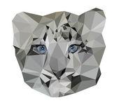 White leopard kitten vector illustration