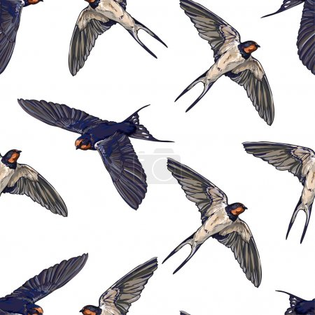 Swallow birds seamless background
