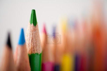 Close-up of multicolor pencils. Green pencil