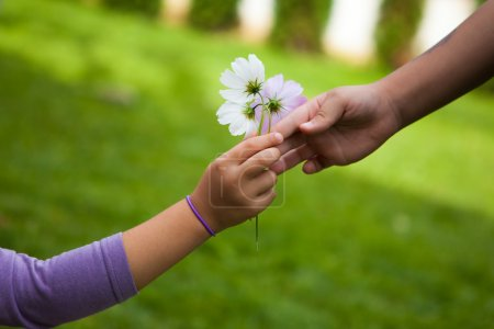 Photo for Child's hand giving flowers to her friend. Outdoors - Royalty Free Image