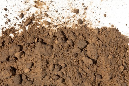 Photo for Soil on white background - Royalty Free Image