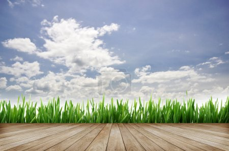 Photo for Wooden platform and green grass with blue sky background - Royalty Free Image