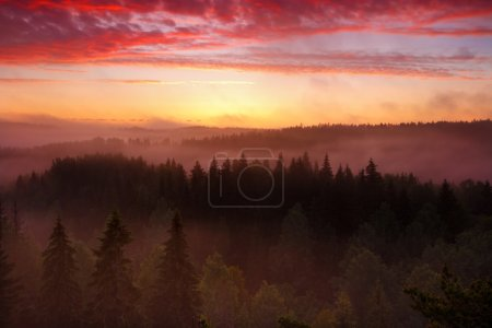 Sunrise in foggy valley