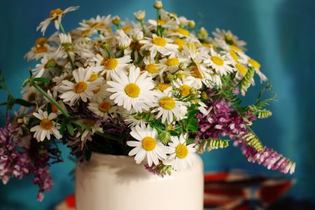 Bouquet of field camomiles.