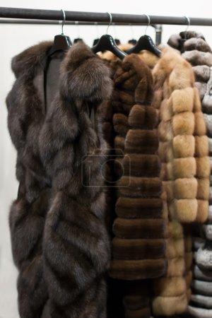 Photo pour Manteaux de fourrure, suspendus sur des cintres - image libre de droit