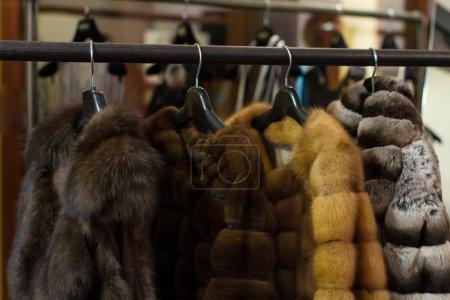 Photo pour Manteaux de fourrure, suspendus sur des cintres dans la boutique - image libre de droit