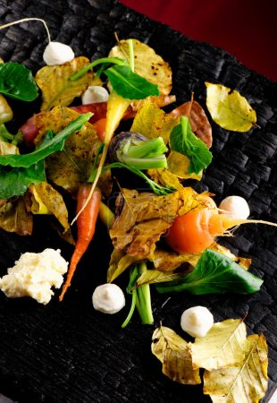 Photo for Autumn vegetables in fine dining restaurant - Royalty Free Image